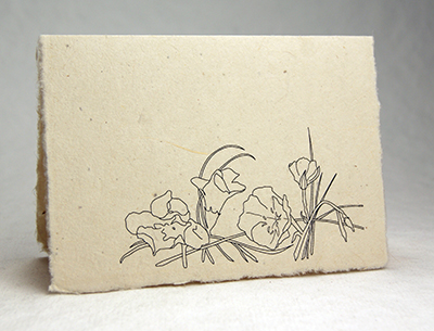 Lotka Seeded Thank You Cards - All flowers Design