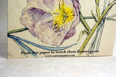 seeded handmade paper blank card