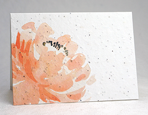 peach peony watercolor card