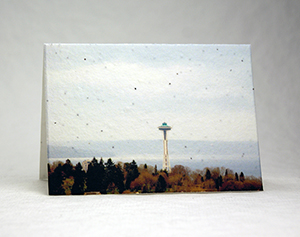 space needle minus the city