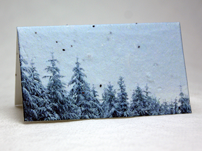 Winter print seed paper place card