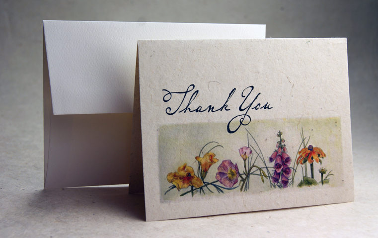 Color lotka thank you note