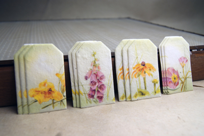 seed paper tags