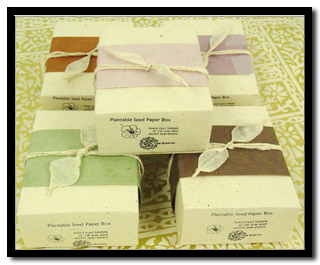 Lotka Seeded Gift Boxes