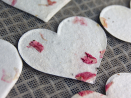 Tiny Seeded Hearts