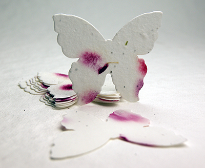 #19s pink butterfly seed paper