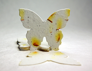 seed paper butterfly