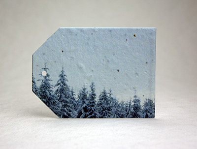 Winter Trees seed paper tags