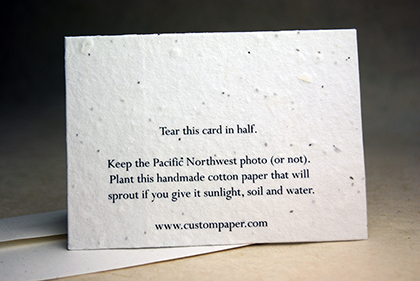 Plant me - printed on back.