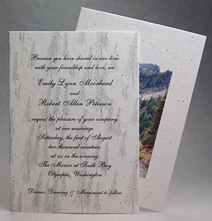 Mountain Photo Panel Invitation