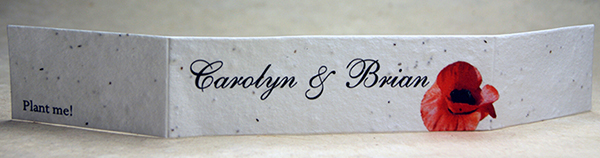 cotton seed paper invitation band