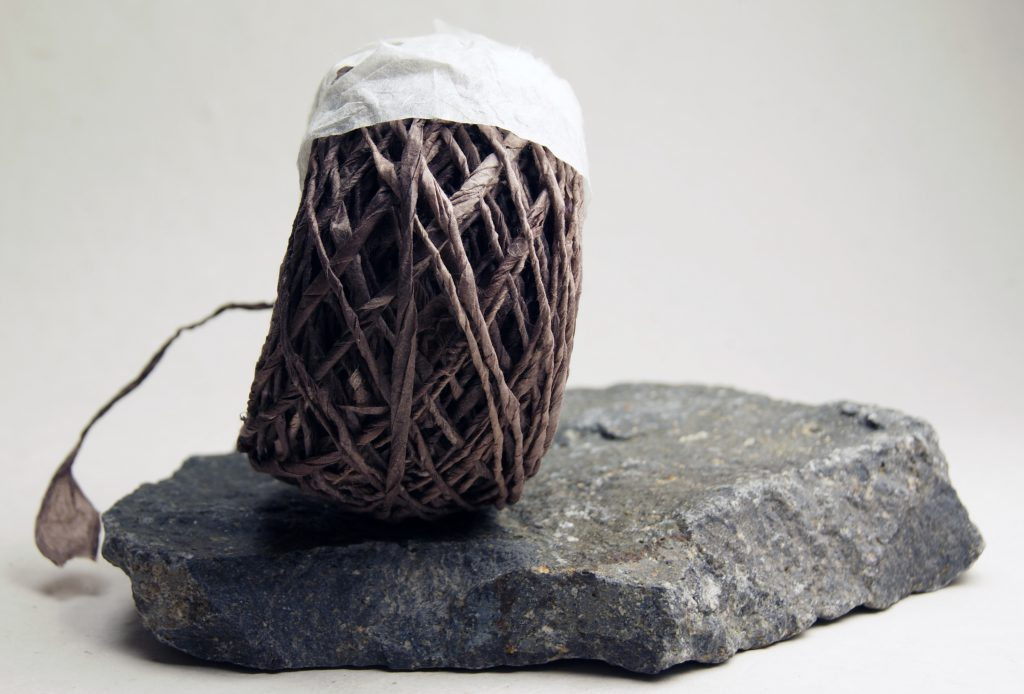 Sequoia eco twist paper twine