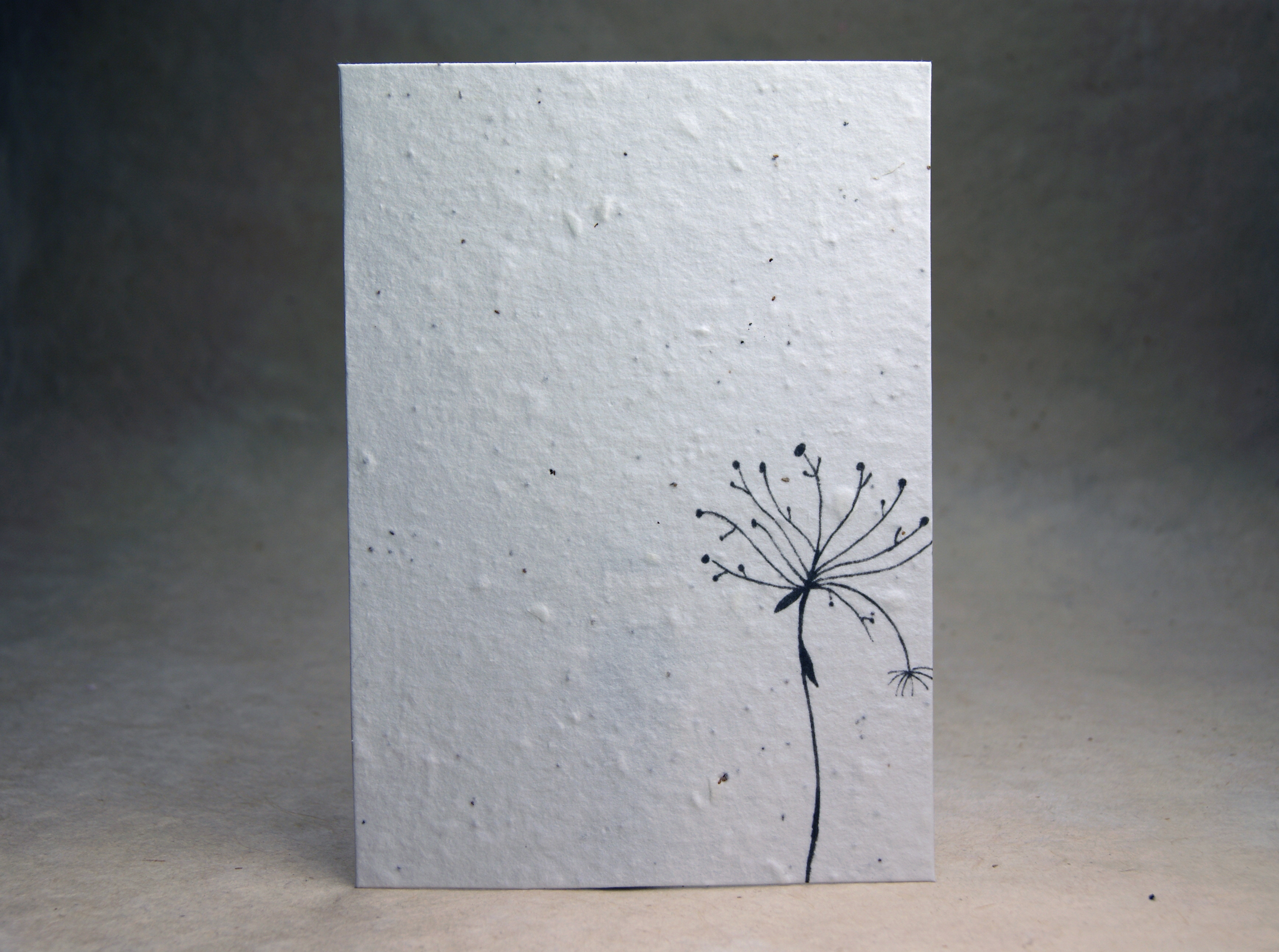 invitations | Of The Earth – paper and ribbon artists