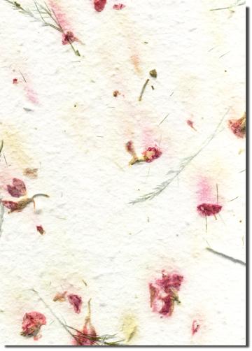Mimosa custom handmade paper