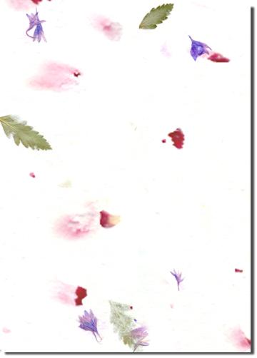 Pawpaw custom handmade paper